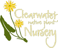 Clearwater Native Plant Nursery